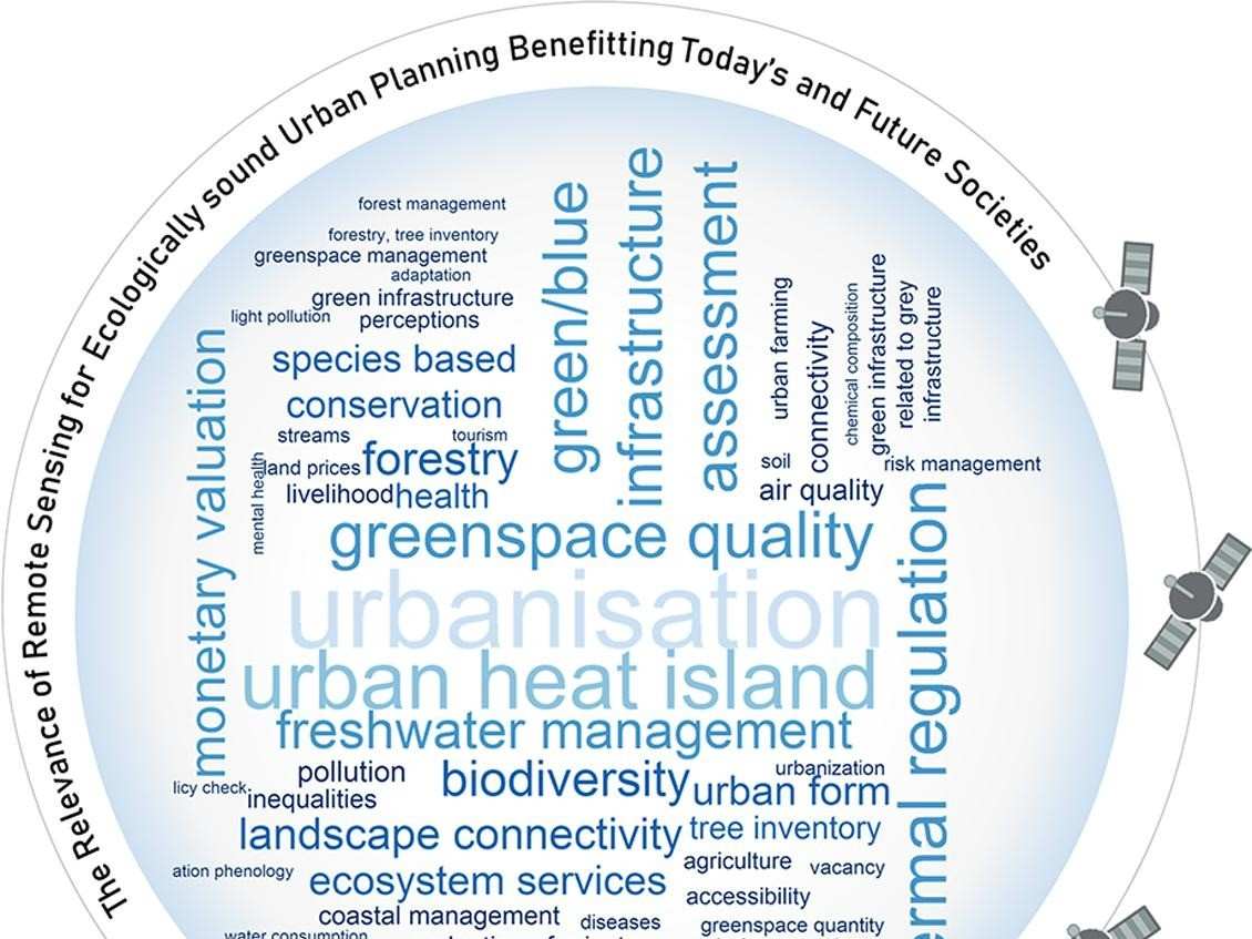 Review of urban ecological remote sensing